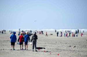 Students from Alamo Elementary School grouped together to walk the beach on Thursday, May 23, 2013, during the Richardson Bay Audubon Center's beach cleanup day. Photo by: Nick Moone