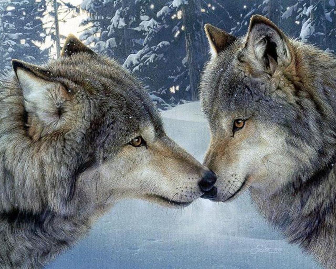 Resultado de imagen para wolves