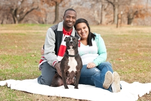 chinesedogsfamily17