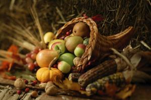 turkey27earlyfruits