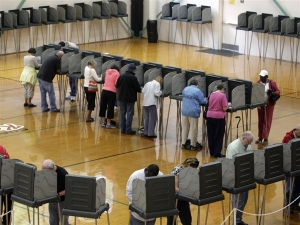 Voters1